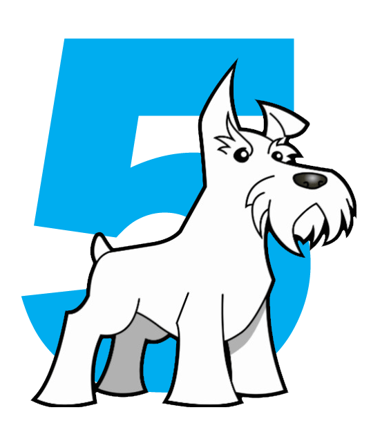 Amarillo SEO | Five Dog Solutions Jethro